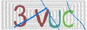 Slika stopke