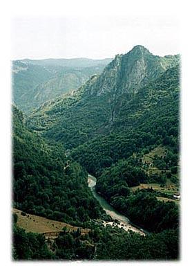 Tara, reka čuvena po splavarenju, teče pod nama