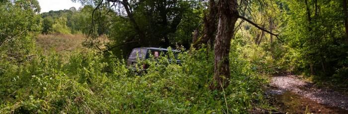 Dobro skrivena zelena oaza na Demižloku
