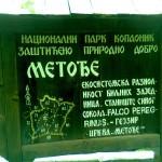 metodje1