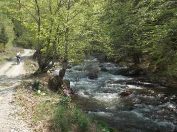 Dojkinacka reka Arbinje