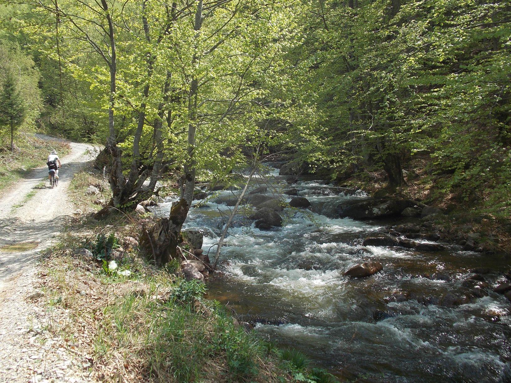 250 Dojkinacka reka Arbinje