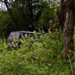 Naša dobro skrivena zelena oaza na Demižloku